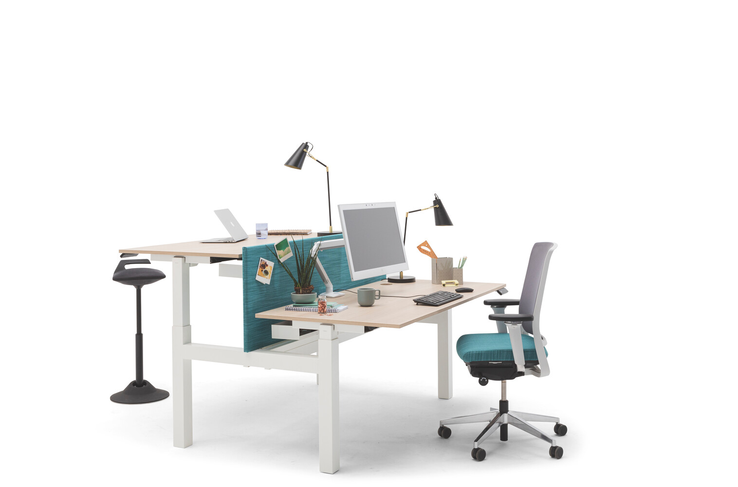 Gispen TMNL dual workstation 2 stage sit stand in white with beech tops and turquoise screen with Zinn office chair front left view