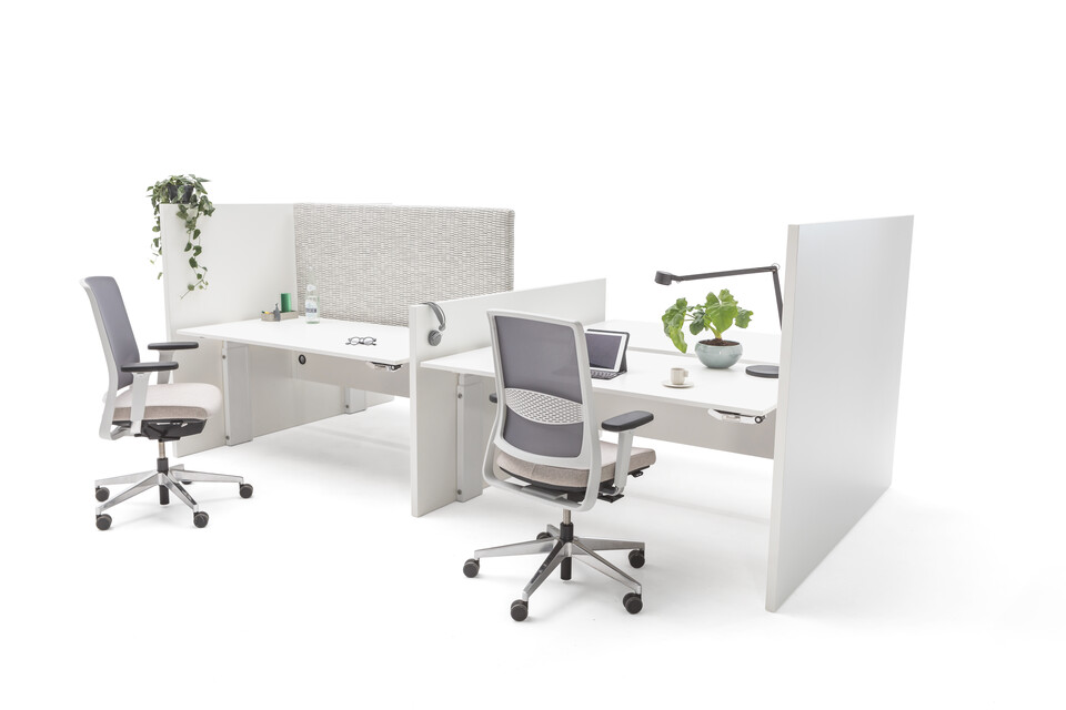 Gispen Cimo dual tables 4 pack with white frame with wooden panel walls with white chipboard tabletops and grey upholstered screen straight thick left with 2 grey Zinn office chairs front right view