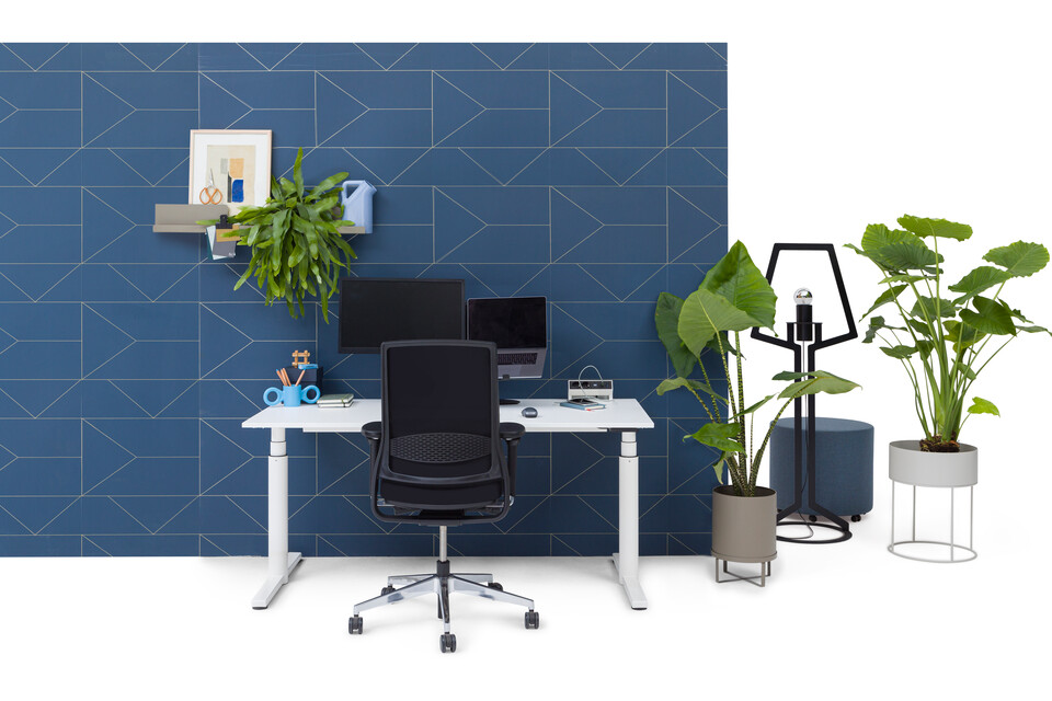 Gispen TM workstation in white with white tabletop and black upholstered black Zinn office chair in front of blue backpanel front view