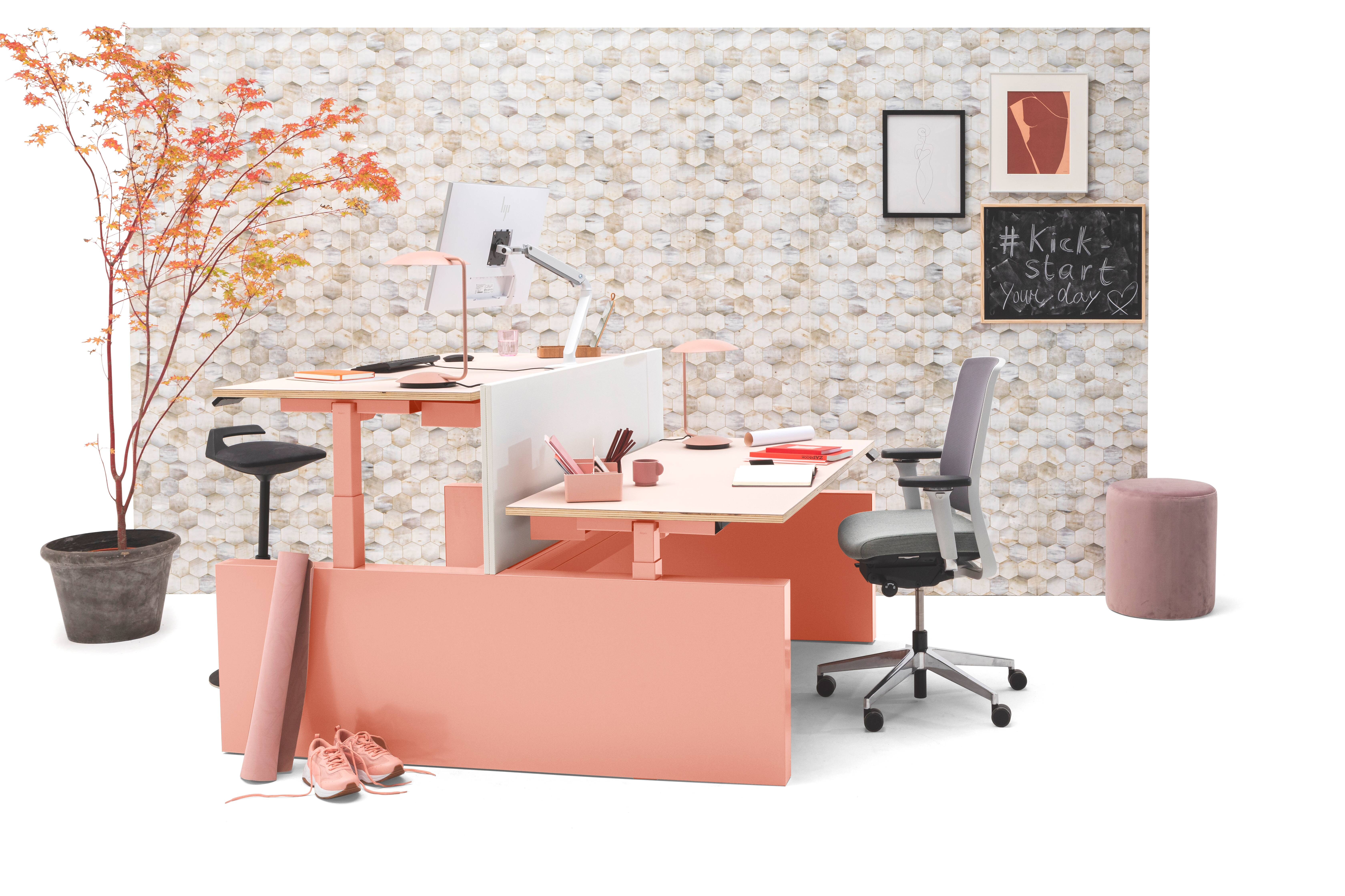 Gispen TMNL dual workstation 3 stage sit stand in pink with pink top and white screen with Zinn office chair front left view